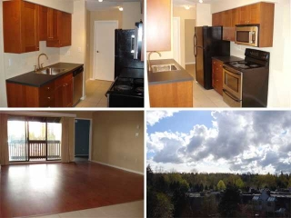 "Main Photo: 501 9857 MANCHESTER Drive in Burnaby: Cariboo Condo for sale in ""BARCLAY WOODS"" (Burnaby North)  : MLS® # V818690"