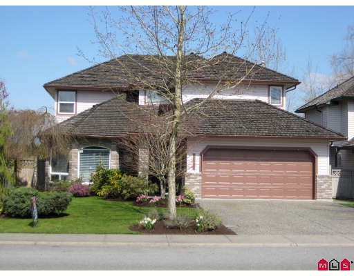 "Main Photo: 20749 93RD Avenue in Langley: Walnut Grove House for sale in ""GREENWOOD ESTATE"" : MLS® # F2907928"
