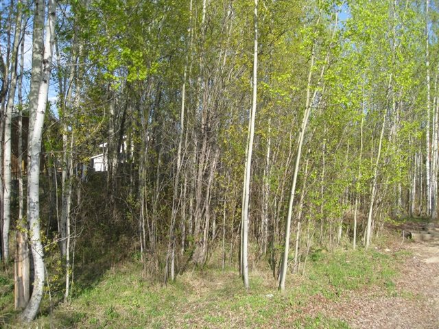 Main Photo: 1808 Cove Crescent: Rural Lac Ste. Anne County Rural Land/Vacant Lot for sale : MLS® # E4055623