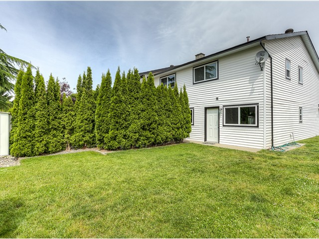 Photo 16: 20362 DALE Drive in Maple Ridge: Southwest Maple Ridge House for sale : MLS® # V1070411