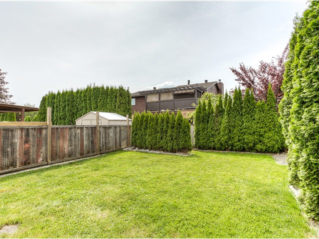 Photo 15: 20362 DALE Drive in Maple Ridge: Southwest Maple Ridge House for sale : MLS® # V1070411