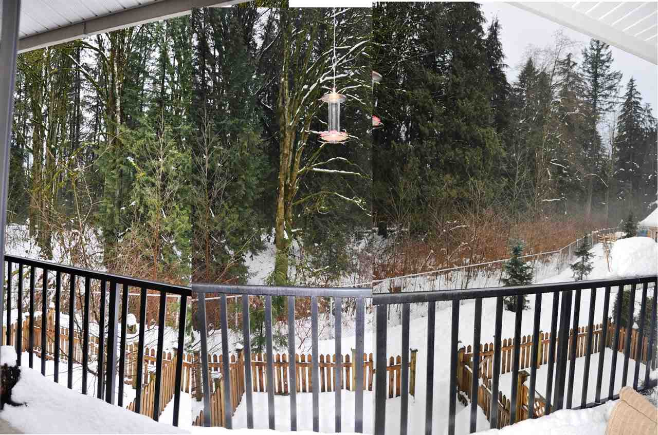 "Photo 16: 5 6383 140 Street in Surrey: Sullivan Station Townhouse for sale in ""PANORAMA WEST VILLAGE"" : MLS(r) # R2137891"