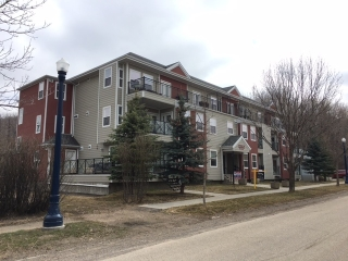 Main Photo: 206 9739 92 Street in Edmonton: Zone 18 Condo for sale : MLS(r) # E4059247