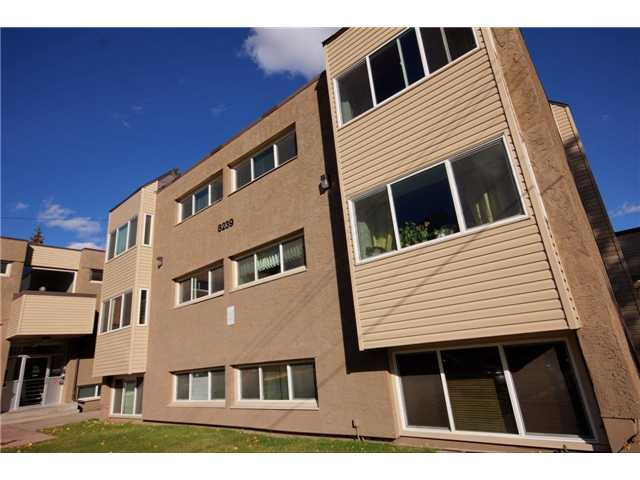 Photo 8: 237 8239 ELBOW Drive SW in Calgary: Chinook Park Condo for sale : MLS(r) # C3543400