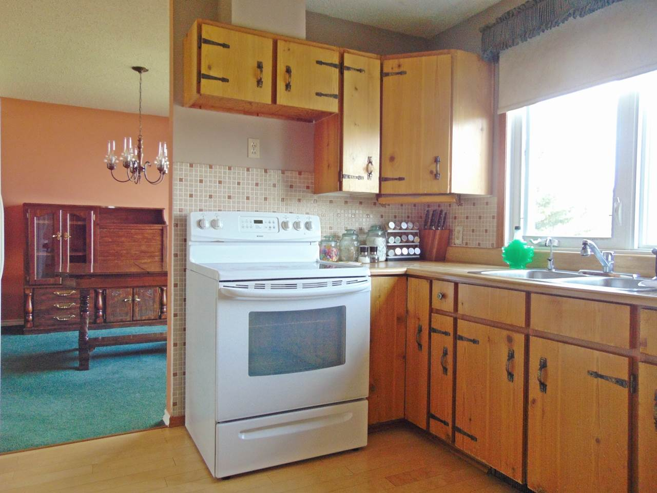 Photo 11: 57130 Rg Rd 230: Rural Sturgeon County House for sale : MLS(r) # E4064722