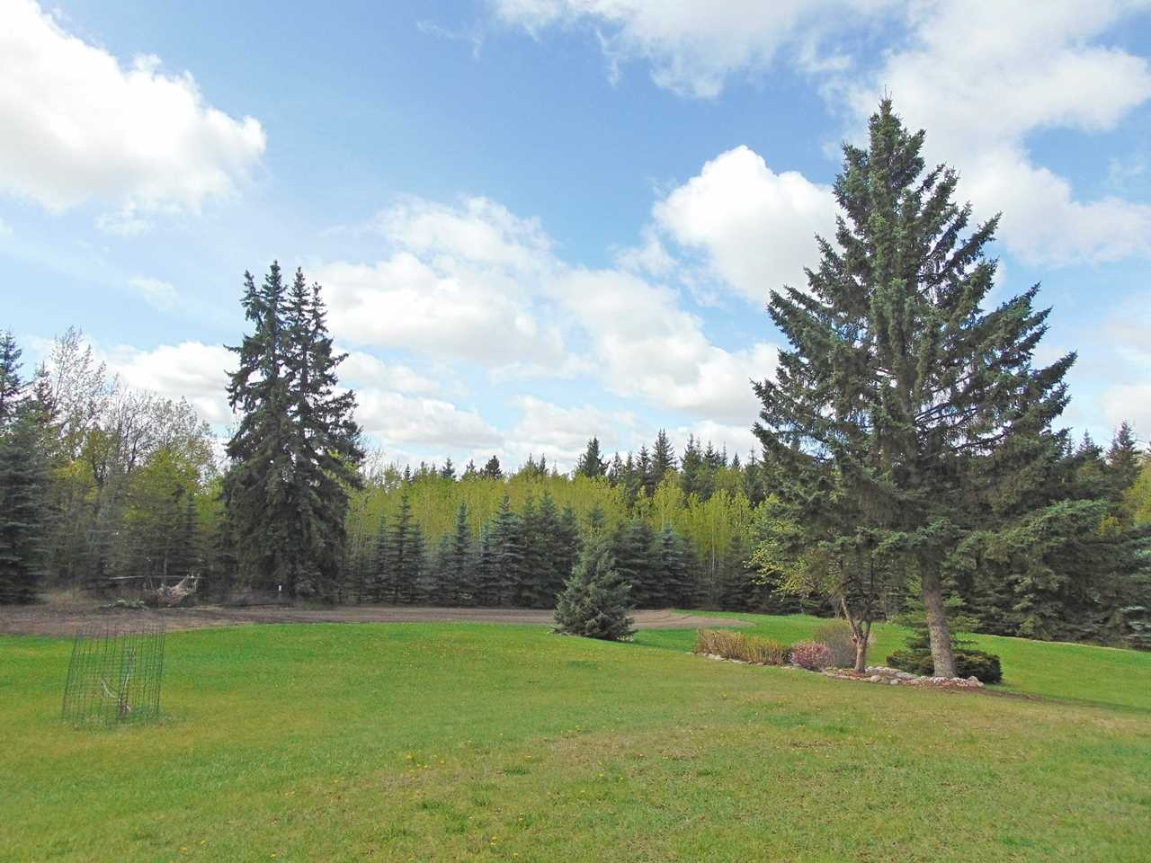Photo 6: 57130 Rg Rd 230: Rural Sturgeon County House for sale : MLS(r) # E4064722