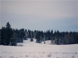 Main Photo: 309 55504 Rge Rd 13 Road: Rural Lac Ste. Anne County Rural Land/Vacant Lot for sale : MLS®# E4080614