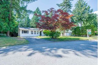 Main Photo: 4429 202A Street in Langley: Langley City House for sale : MLS®# R2303024