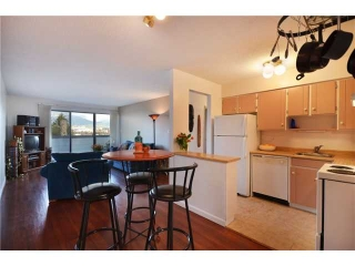 Main Photo: 315 665 E 6TH Avenue in Vancouver: Mount Pleasant VE Condo for sale (Vancouver East)  : MLS® # V925049
