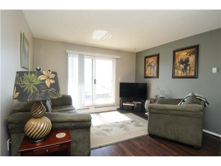 Main Photo: 411 9620 174 Street in Edmonton: Zone 20 Condo for sale : MLS(r) # E4051299