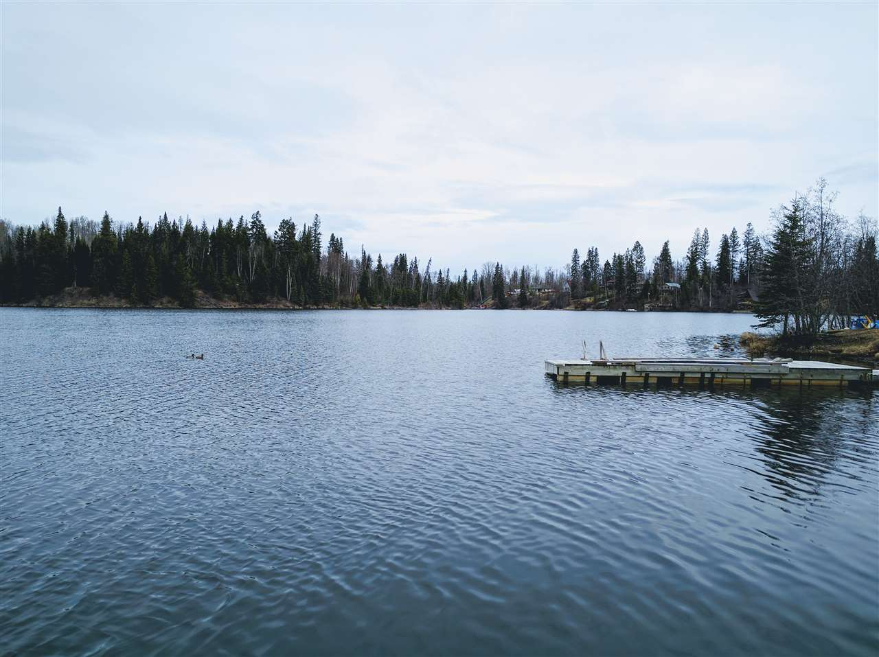 "Photo 4: 27490 NESS LAKE Road: Ness Lake House for sale in ""NESS LAKE"" (PG Rural North (Zone 76))  : MLS(r) # R2160417"