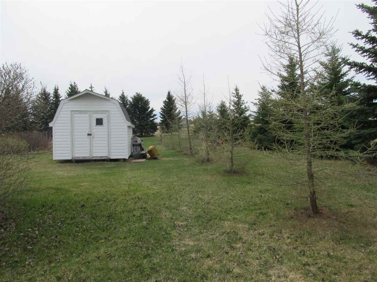 Photo 23: RR212 Hwy 18: Rural Thorhild County House for sale : MLS(r) # E4063068
