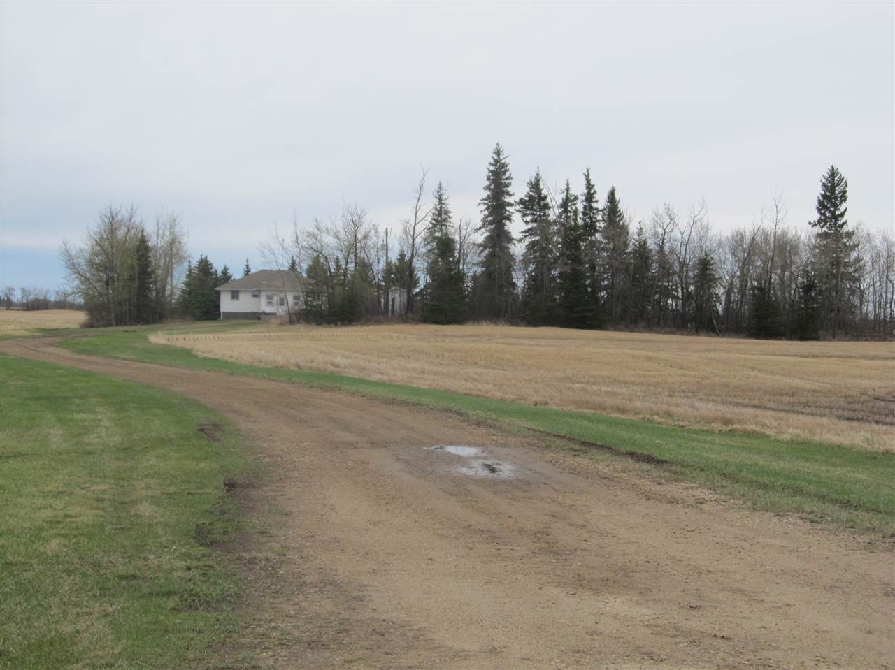 Photo 19: RR212 Hwy 18: Rural Thorhild County House for sale : MLS(r) # E4063068