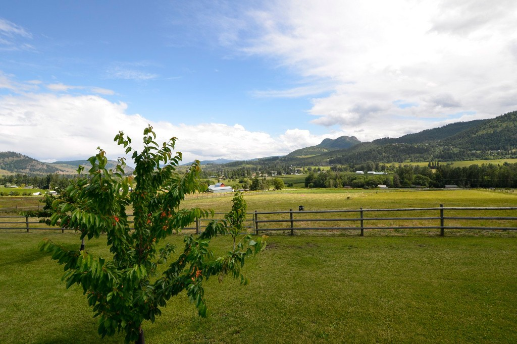 Photo 40: 6874 Buchanan Road in Coldstream: Mun of Coldstream House for sale (North Okanagan)