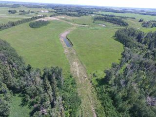 Main Photo: Twp Rd 470 Rge Rd 244: Rural Wetaskiwin County Rural Land/Vacant Lot for sale : MLS®# E4098936