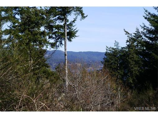 Photo 5: 6138 Llanilar Road in SOOKE: Sk East Sooke Land for sale (Sooke)  : MLS(r) # 374214