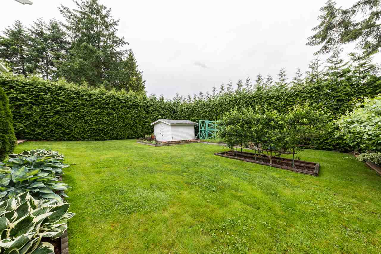 Photo 18: 22875 STOREY Avenue in Maple Ridge: East Central House for sale : MLS(r) # R2179109