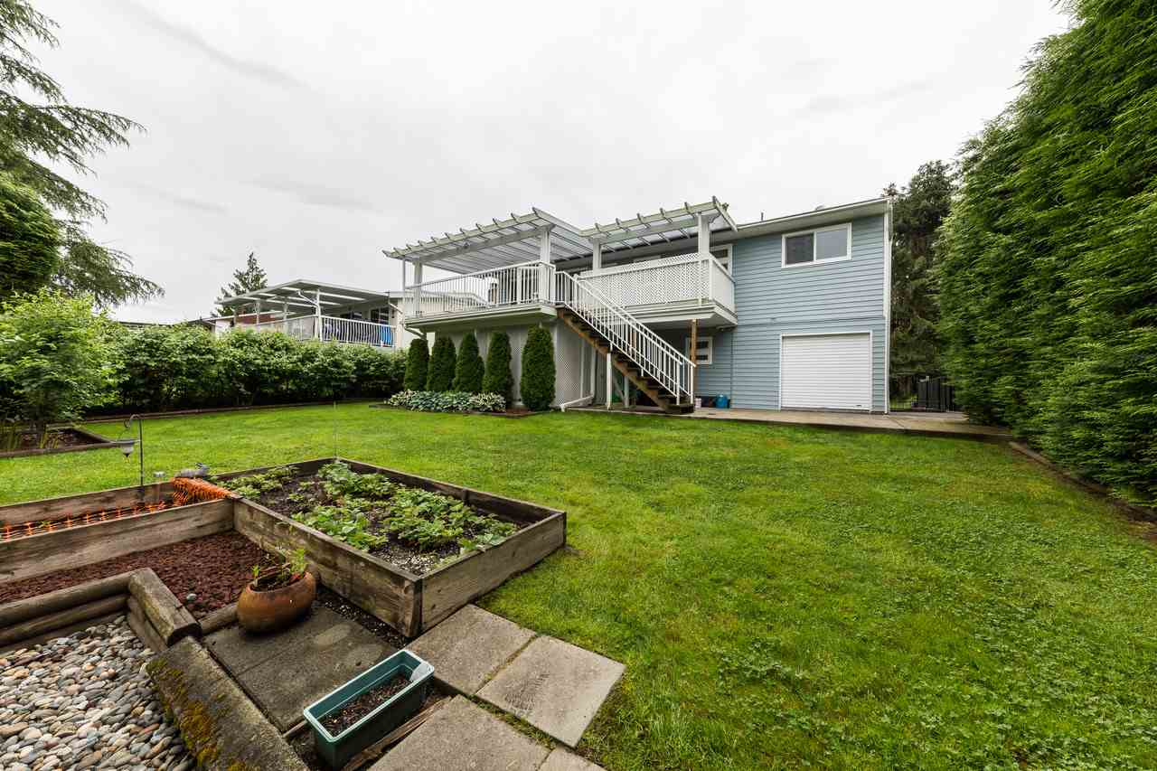 Photo 19: 22875 STOREY Avenue in Maple Ridge: East Central House for sale : MLS(r) # R2179109