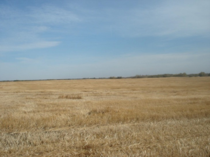 Main Photo: Range Road 183 Between Township Roads 540 and 542: Rural Lamont County Rural Land/Vacant Lot for sale : MLS® # E4070040