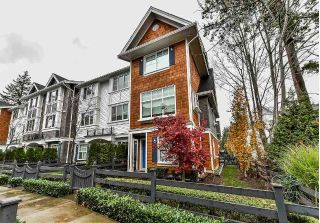 "Main Photo: 17 14905 60 Avenue in Surrey: Sullivan Station Townhouse for sale in ""The Grove at Cambridge"" : MLS® # R2221606"