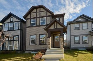 Main Photo: 3005 ARTHURS Crescent in Edmonton: Zone 55 House for sale : MLS®# E4116953