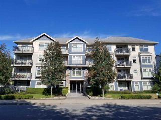 "Main Photo: 109 8084 120A Street in Surrey: Queen Mary Park Surrey Condo for sale in ""ECLIPSE"" : MLS®# R2293838"