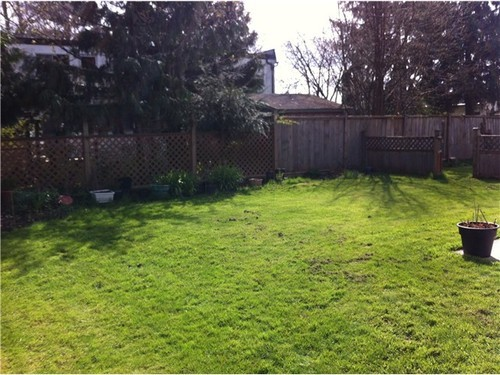 Photo 9: 4804 44A Ave in Ladner: Home for sale : MLS(r) # V941596