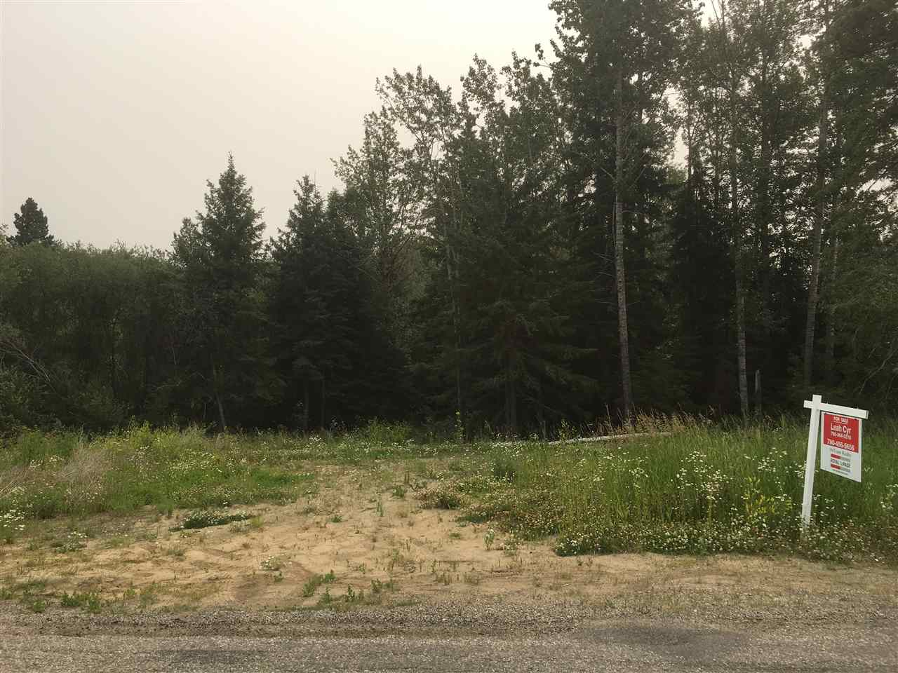Main Photo: 52415 Range Road 20: Rural Parkland County Rural Land/Vacant Lot for sale : MLS® # E4074346