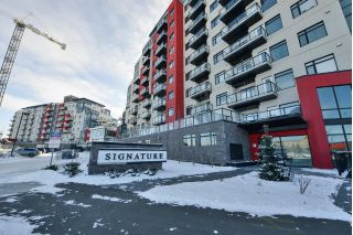 Main Photo: 804 5151 WINDERMERE Boulevard in Edmonton: Zone 56 Condo for sale : MLS® # E4091699