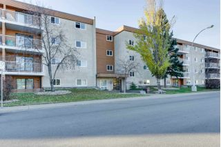 Main Photo: 306 3611 145 Avenue in Edmonton: Zone 35 Condo for sale : MLS®# E4133393