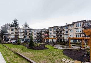 Main Photo: 411 2565 CAMPBELL AVENUE in Abbotsford: Central Abbotsford Condo for sale : MLS® # R2185831