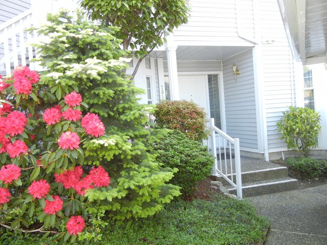 Main Photo: 705 9135 154 in Surrey: Fleetwood Tynehead Townhouse for sale : MLS® # F1309737