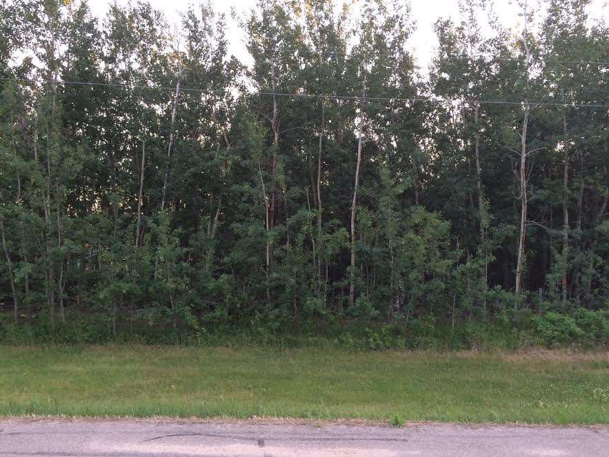 Photo 9: 19 22515 Twp Rd 575A: Rural Sturgeon County Rural Land/Vacant Lot for sale : MLS(r) # E4061245