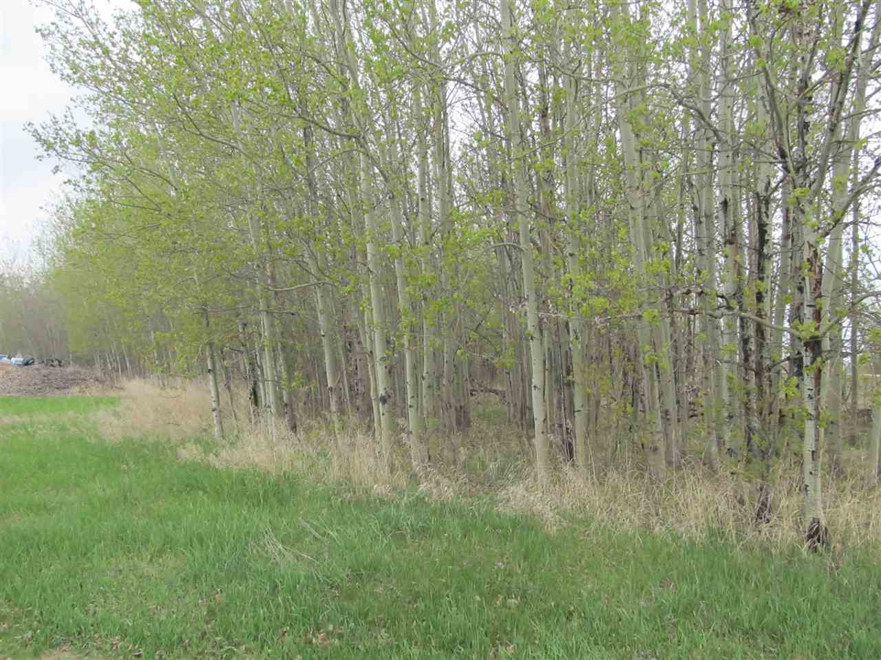Photo 4: 19 22515 Twp Rd 575A: Rural Sturgeon County Rural Land/Vacant Lot for sale : MLS(r) # E4061245