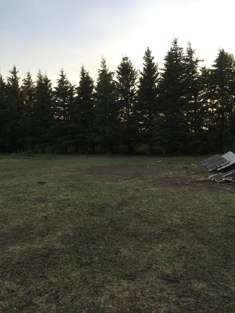 Photo 10: 19 22515 Twp Rd 575A: Rural Sturgeon County Rural Land/Vacant Lot for sale : MLS(r) # E4061245