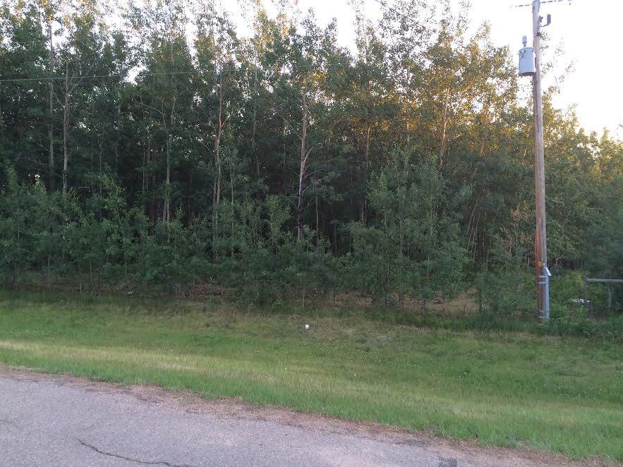 Photo 8: 19 22515 Twp Rd 575A: Rural Sturgeon County Rural Land/Vacant Lot for sale : MLS(r) # E4061245