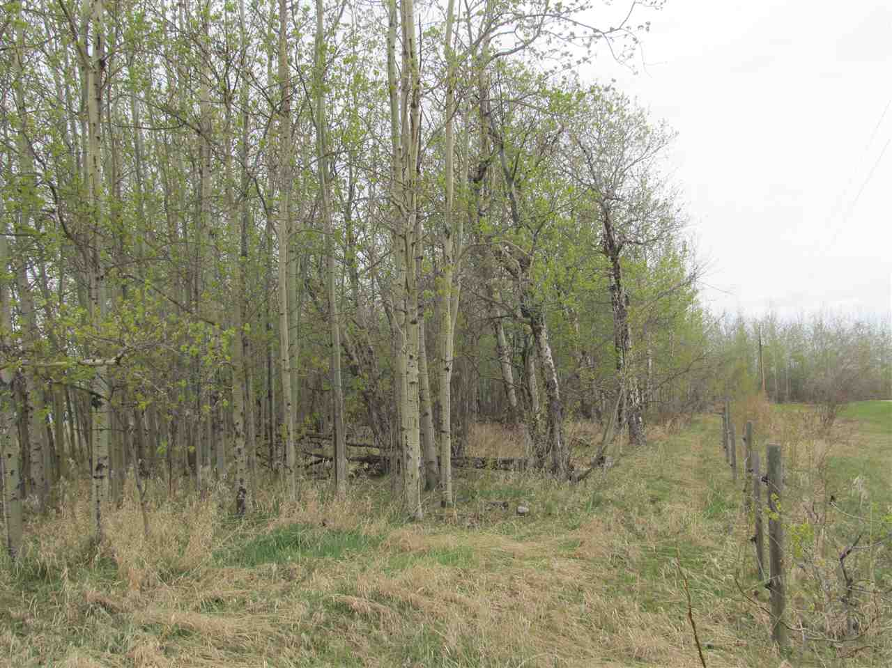 Photo 3: 19 22515 Twp Rd 575A: Rural Sturgeon County Rural Land/Vacant Lot for sale : MLS(r) # E4061245