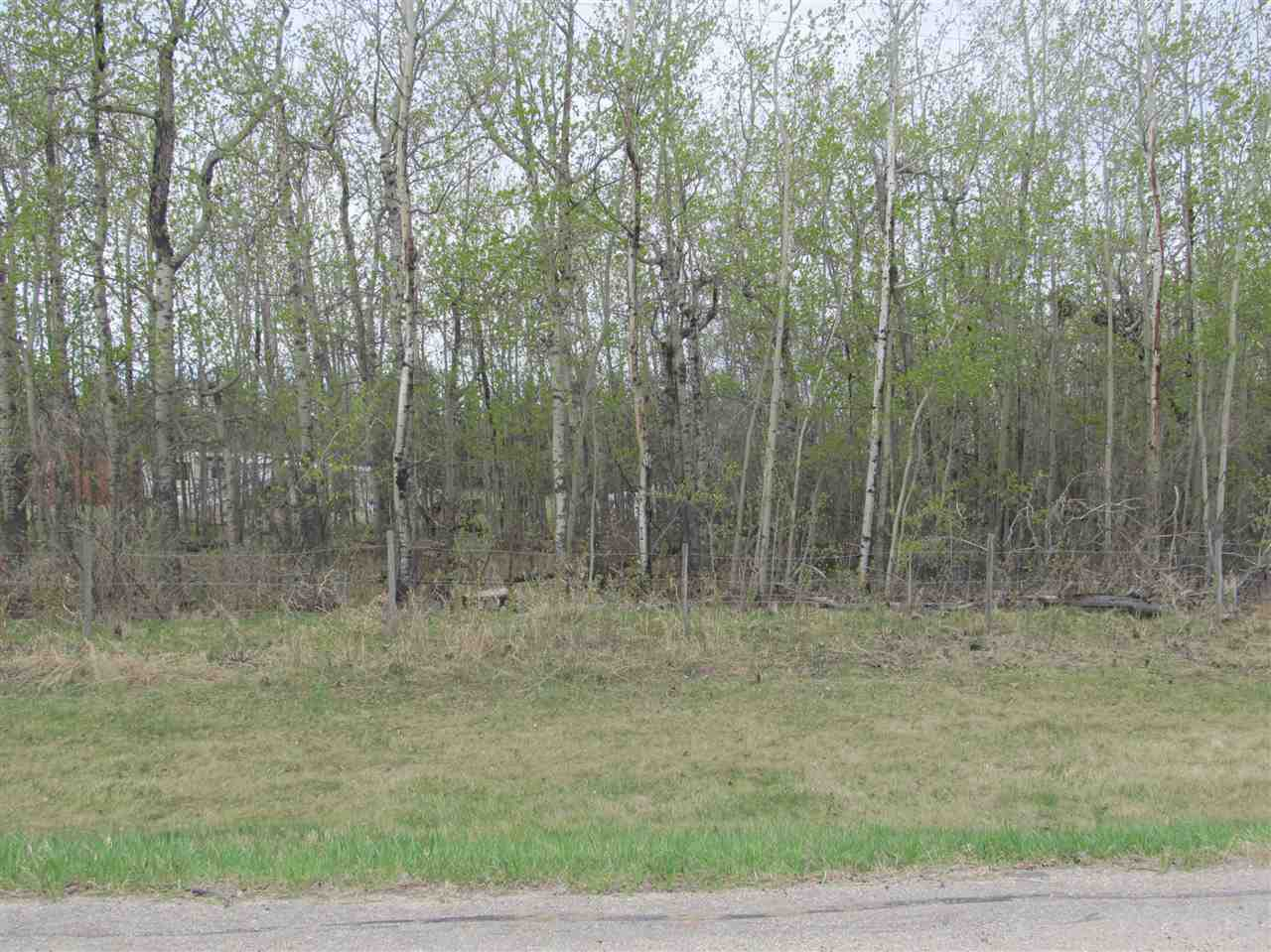 Photo 5: 19 22515 Twp Rd 575A: Rural Sturgeon County Rural Land/Vacant Lot for sale : MLS(r) # E4061245