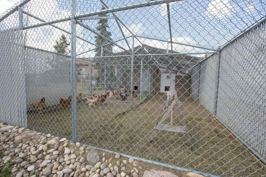 2 spotless Chicken Coops