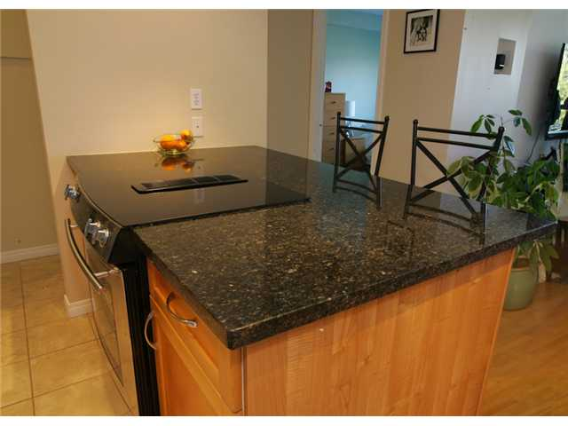 "Photo 3: 415 774 GREAT NORTHERN Way in Vancouver: Mount Pleasant VE Condo for sale in ""PACIFIC TERRACES"" (Vancouver East)  : MLS(r) # V880299"