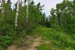 Main Photo: Rge Rd 34 Hwy 633: Rural Lac Ste. Anne County Rural Land/Vacant Lot for sale : MLS® # E4003082