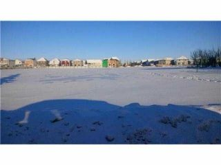 Main Photo: 9957 100 Avenue: Morinville Land (Commercial) for sale : MLS® # E4048733