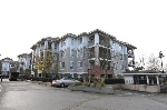 "Main Photo: C313 8929 202 Street in Langley: Walnut Grove Condo for sale in ""THE GROVE"" : MLS(r) # R2142761"