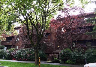 Main Photo: 204 1827 W 3RD Avenue in Vancouver: Kitsilano Condo for sale (Vancouver West)  : MLS(r) # R2168242