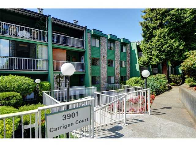 "Main Photo: 201 3901 CARRIGAN Court in Burnaby: Government Road Condo for sale in ""LOUGHEED ESTATES"" (Burnaby North)  : MLS® # V1030093"
