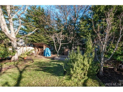 Photo 18: 430 Luxton Avenue in VICTORIA: Vi James Bay Single Family Detached for sale (Victoria)  : MLS(r) # 374422