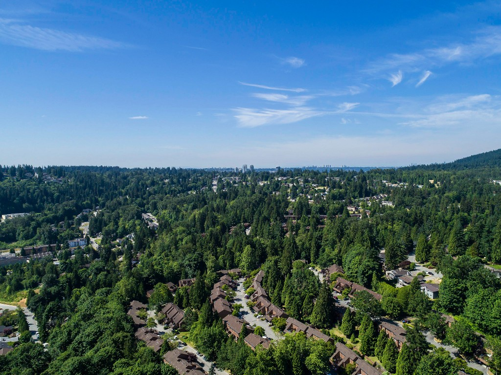Photo 49: 1623 GORE Street in Port Moody: College Park PM House for sale : MLS(r) # R2186517