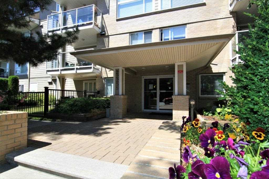 "Main Photo: 113 22255 122ND Avenue in Maple Ridge: West Central Condo for sale in ""MAGNOLIA GATE"" : MLS(r) # R2190207"