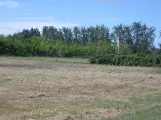 Main Photo: 1A 57514 RR225: Rural Sturgeon County Rural Land/Vacant Lot for sale : MLS® # E4075573