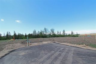 Main Photo: 8 - 53217 RR 263: Rural Parkland County Rural Land/Vacant Lot for sale : MLS®# E4114108
